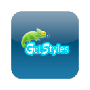 Иконка Get Styles