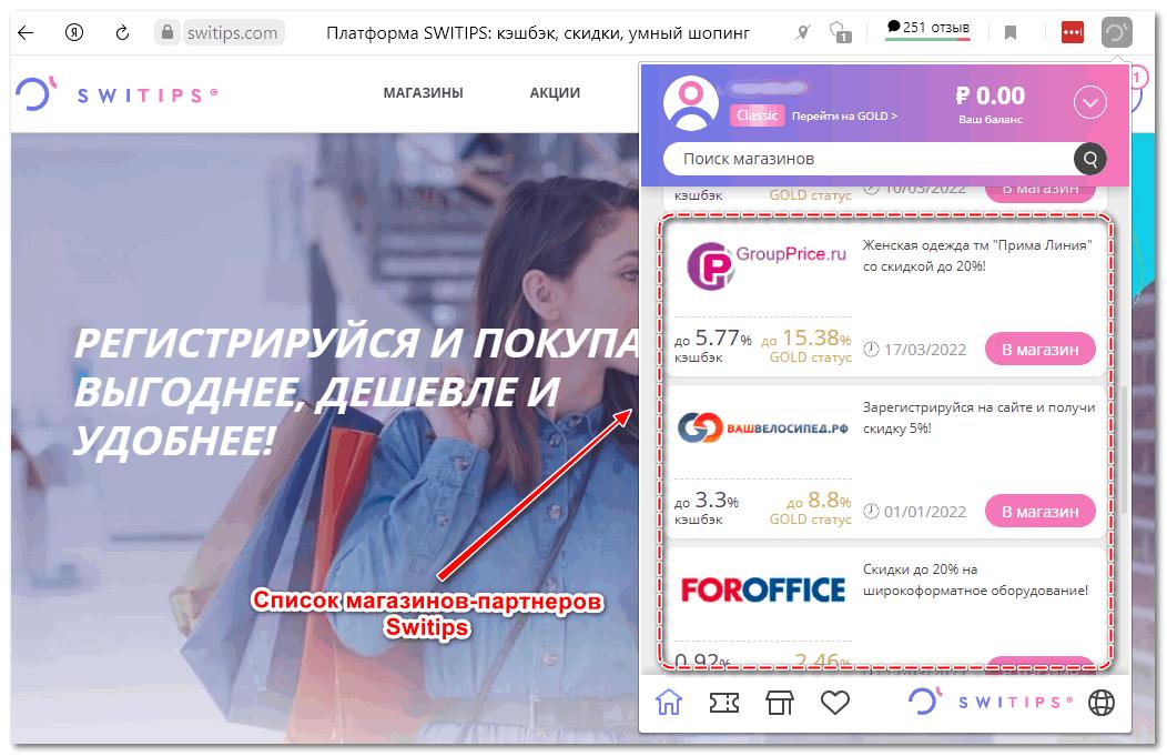 Интерфейс Switips