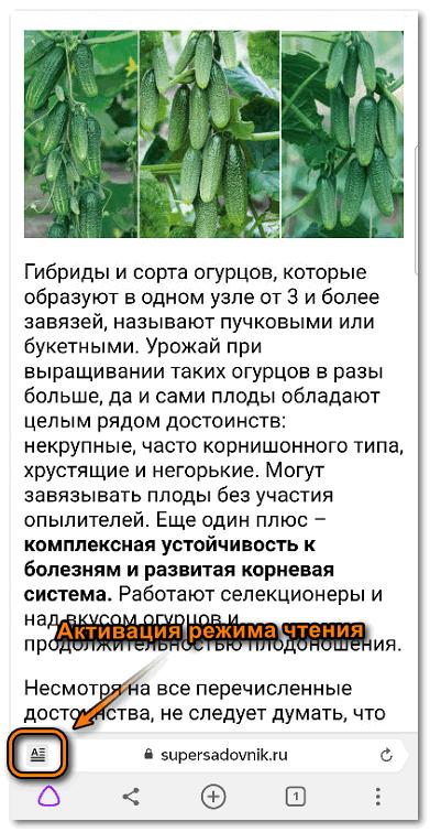 Режим чтения в Яндекс браузере