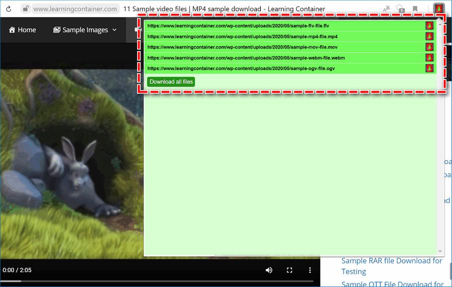 Скачка из Flash Video Downloader
