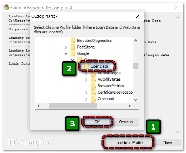Обзор папок в Chrome Password Recovery Tool