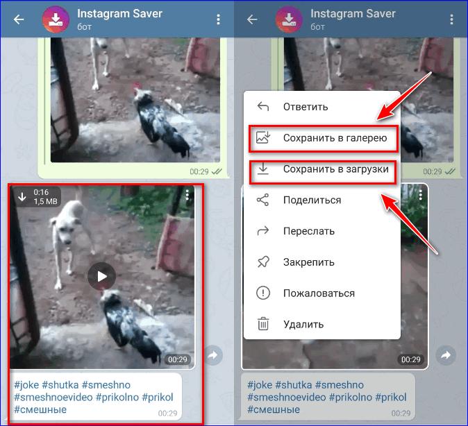 Скачать видео Инстаграм через чат бот Телеграм3
