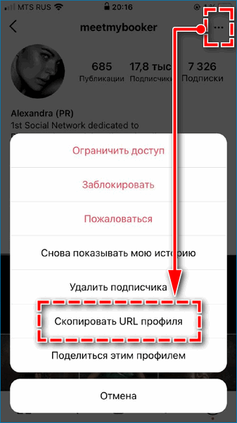 Скопировать ссылку на Инстаграм
